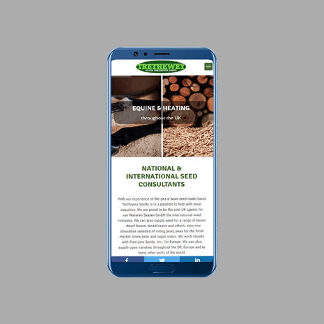 DT Seeds Mobile Friendly Web Design