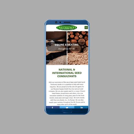 DT Seeds Mobile Friendly Web Design