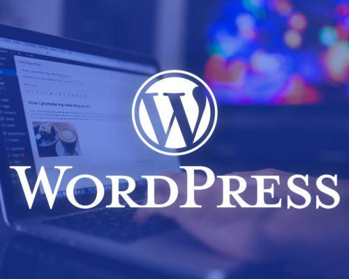 Looking-for-WordPress